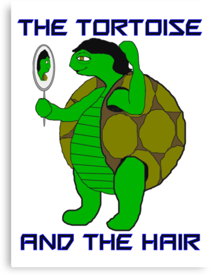 The Tortoise and the Hair by PharrisArt