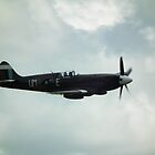 SEAC Spitfire PRXIX     by mike  jordan.
