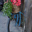 A Tisket, A Tasket....A Little Yellow Basket by Lisa Baumeler