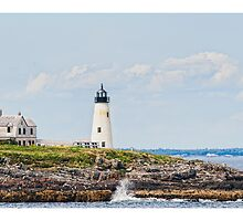 Wood Island Light by Richard Bean
