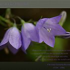 Hope ~ Harebell by JETAdamson