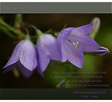Hope ~ Harebell Photographic Print