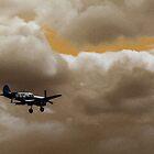 War Hawk landing by Siegeworks .