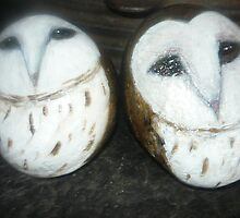 Clachnaharry stones, (baby owls) by margaretfraser