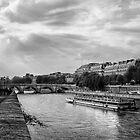 Up a Lazy River by Yelena Rozov