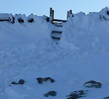 Snow bound stile by therightprofile