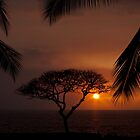 Sunset at Kona by ejlinkphoto