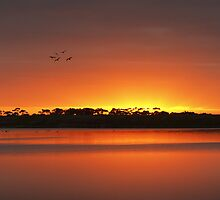 Lagoon Sunrise - Limeburners Bay by Hans Kawitzki