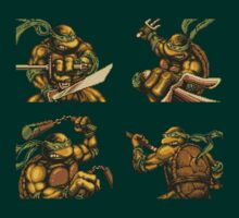 Turtle Power by loogyhead