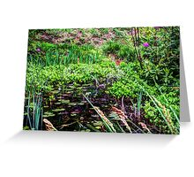 Lily pond Devon Greeting Card
