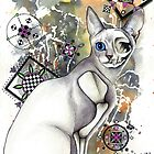 Skeleton Cat by cwatts