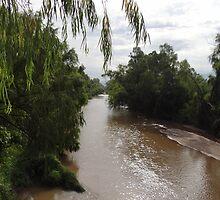Wild Stream Landscape - Paisaje Fluvial Silvestre by Bernhard Matejka
