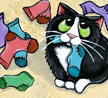 Missing Socks by Lisa Marie Robinson
