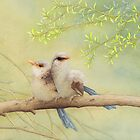 Juvenile variegated fairy-wrens by Laura Grogan