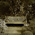 The old little bench by Anouk Westerdijk