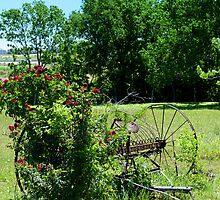 Rural Texas by Shiva77