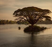 Mekong by Hugh Adams