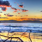 Driftwood Sunset - Byron Bay by Cheryl Styles