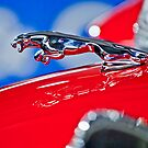 1961 Jaguar Kougar Hood Ornament 2 by Jill Reger