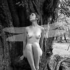 Forest Fairy No.1 b/w by David Robinson