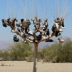 Shoe Tree by Loree McComb