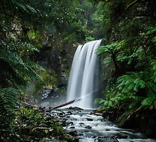 Hopetoun Falls in the Beech Forest by autumnleaf