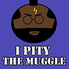 I pity the muggle by nimbusnought
