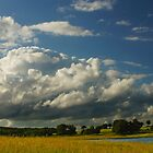 Cloudy sky  by flashcompact