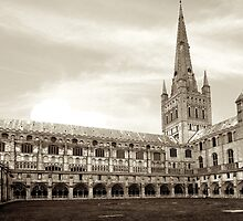 Norwich Cathedral by Cyrusdvirus