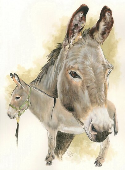Donkey by BarbBarcikKeith