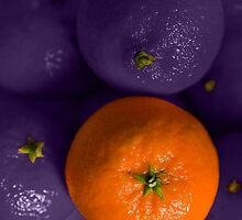 Funky Fruit by Andy Smith