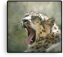 Yawn...! Canvas Print