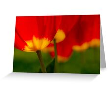 Five Red Tulips Greeting Card