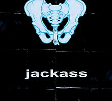 Minimalist Jackass Movie Poster by buzatron