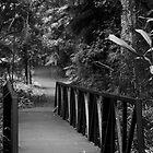 Bridge by benjlynch