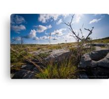 Beautiful Burren Canvas Print