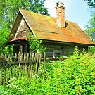 Timber Dacha at Kartashevskaya by M-EK
