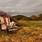 Poor Man's Throne by CollinScott