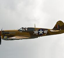 Curtis P-40 Warhawk by Nigel Bangert