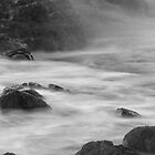 water slow bnw by TheLostArt