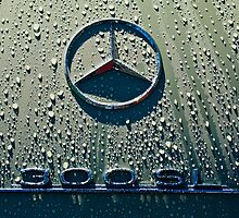 1957 Mercedes Benz 300SL Roadster Emblem by Jill Reger