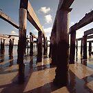 pilings by lucy loomis