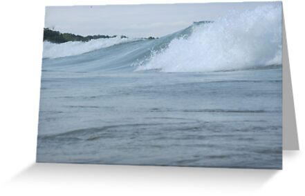Surfs up in Whitefish Bay Wisconsin Img 406 by Thomas Murphy