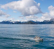 Pilot Boat alongside, Inside Passage, Canada, 2012. by johnrf