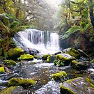 Horseshoe Falls (Panorama) - Mt Field National Park by Anthony Davey