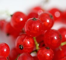 Currants by RosiLorz