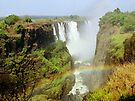 Victoria Falls with Rainbow by Carole-Anne