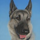 German shepherd portrait by artbykarie-ann