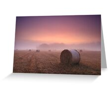 Purple Dawn Greeting Card