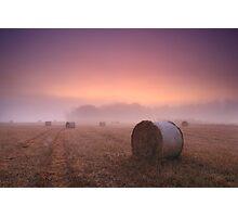 Purple Dawn Photographic Print